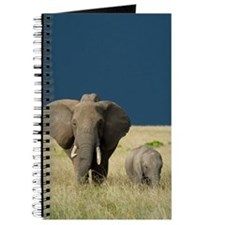 ELEPHANT MOTHER AND BABY Journal