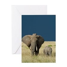 ELEPHANT MOTHER AND BABY Greeting Card