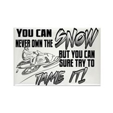 Tame the Snow Rectangle Magnet