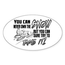 Tame the Snow Oval Decal
