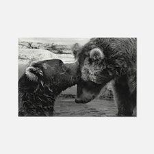 Bear Forehead Kiss Rectangle Magnet