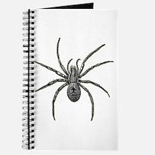 Spider Journal
