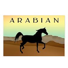 Desert Arabian Horse Postcards (Package of 8)