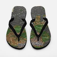 Chryseia Flip Flops