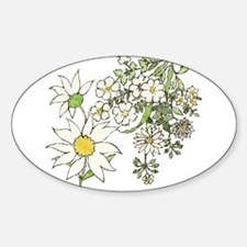 Vintage Floral Art Daisies Illustration Decal