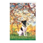 Spring / Fox T (1) Postcards (Package of 8)