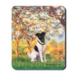 Spring / Fox T (1) Mousepad