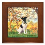 Spring / Fox T (1) Framed Tile