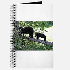 black bears 2007 Journal