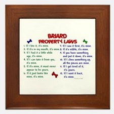 Briard Property Laws 2 Framed Tile