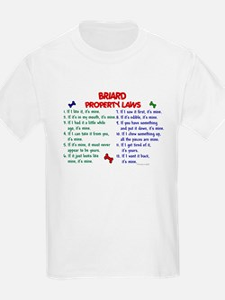 Briard Property Laws 2 T-Shirt