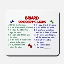 Briard Property Laws 2 Mousepad