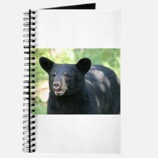 black bear Journal