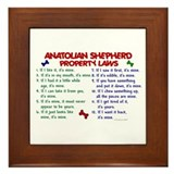 Anatolian shepherd Framed Tiles