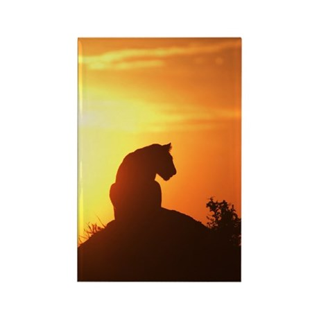 LION AT DAWN Rectangle Magnet (10 pack)