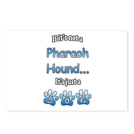 Pharaoh Hound Not Postcards (Package of 8)