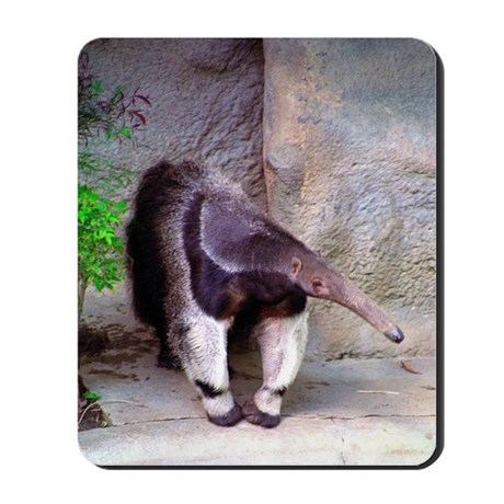 Giant Anteater Front Mousepad
