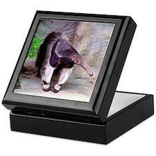 Giant Anteater Front Keepsake Box