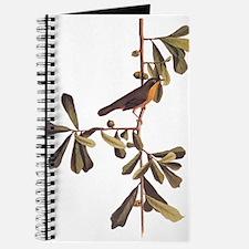 Roscoe's Yellowthroat Warbler Bird Audubon Journal