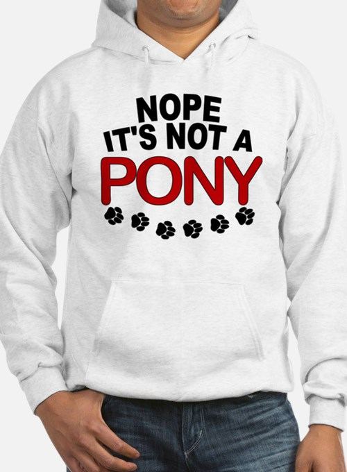 Great Dane Not a Pony Hoodie