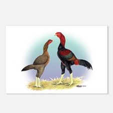 Malay Rooster and Hen Postcards (Package of 8)