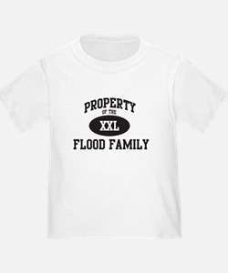 Property of Flood Family T