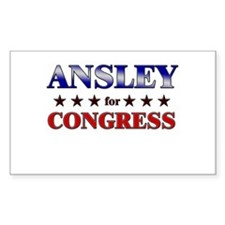 ANSLEY for congress Rectangle Decal