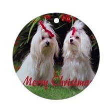 Maltese Dog Ornament (Round)
