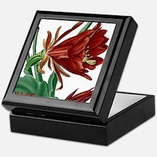 Christmas Cactus Keepsake Box