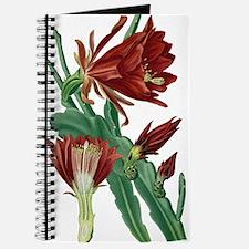 Christmas Cactus Journal