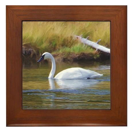 Trumpeter Swan Framed Tile