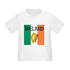 Ireland flag with Harp T