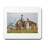 Giraffe Herd Products Mousepad