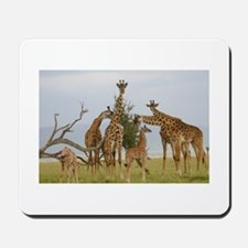 Giraffe Herd Products Mousepad