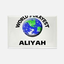 World's Okayest Aliyah Magnets