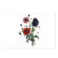 Poppy Art Postcards (Package of 8)