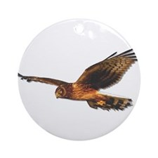 Northern Harrier Ornament (Round)