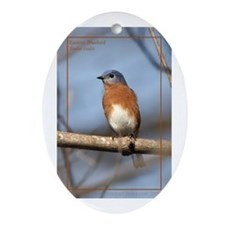 Eastern Bluebird Oval Ornament