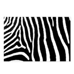 Helaine's Zebra Pattern Postcards (Package of 8)