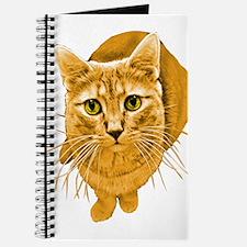 Orange Cat Journal