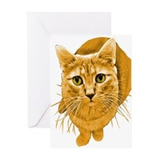 Orange Cat Greeting Card