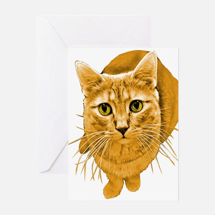 Birthday Orange Cat: Card Ideas, Sayings, Designs