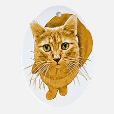 Orange Cat Oval Ornament