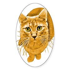 Orange Cat Oval Decal