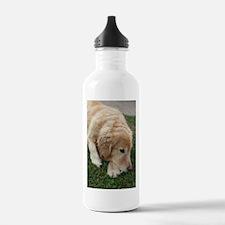 Nala the golden retrie Water Bottle