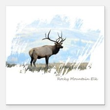 "Rocky Mountain Elk Square Car Magnet 3"" x 3"""