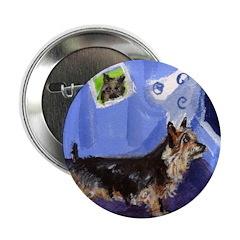 Australian Terrier Sees smili Button