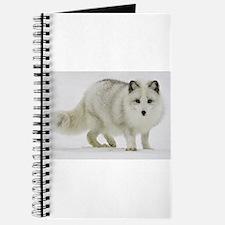 Arctic Fox Blends Into His Surroundings Journal