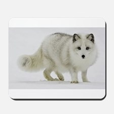 Arctic Fox Blends Into His Surroundings Mousepad
