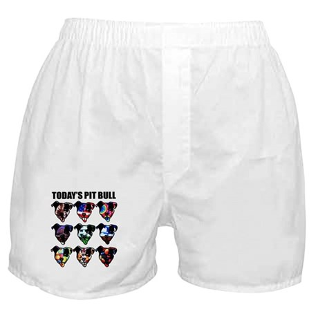 Today's Pit Bull Boxer Shorts